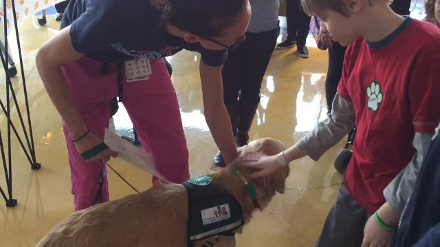 PSE&G Children's Specialized Hospital in New Brunswick welcomed their newest staff member on Thursday -- Burton, the therapy dog.