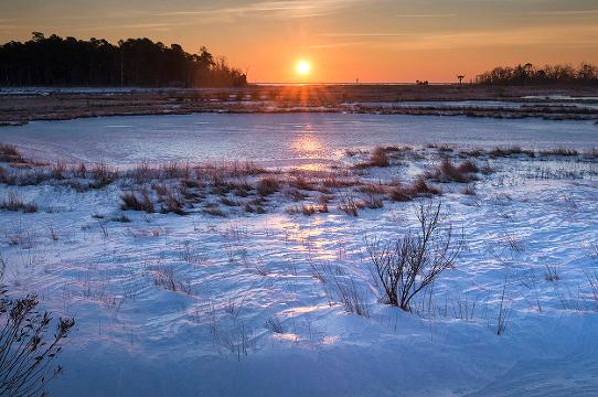 Cattus Island County Park in Toms River is locked in by Winter's Cold and only the hardiest take to walking its trails. STAFF VIDEO BY PETER ACKERMAN