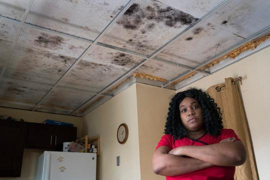 Black Mold: Living in a Renter's Hell
