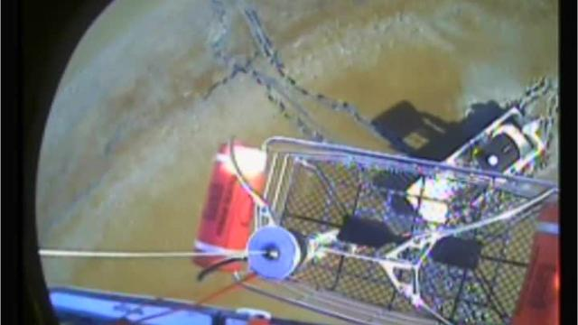 Again, the Coast Guard saves the day in New Jersey's coastal waters. This time in the Delaware Bay off Downe Township in Cumberland County.