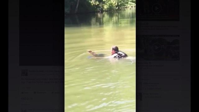 RAW VIDEO: Man rescues fawn in Fort Loudoun Lake