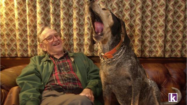 Tennessee Mascot Bluetick Coonhound Now Officially State Dog