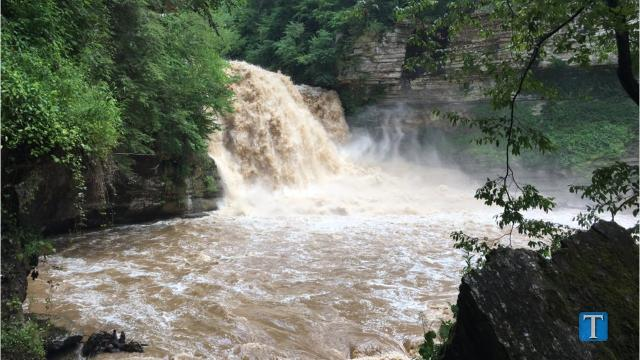 More Than 40 People Rescued From Cummins Falls State Park