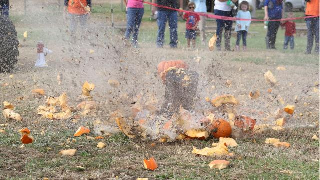 Whether it's dropping pumpkins from dazzling heights or letting children and families stomp, smash or throw them all over the place, there's no wrong way to destroy those pumpkins