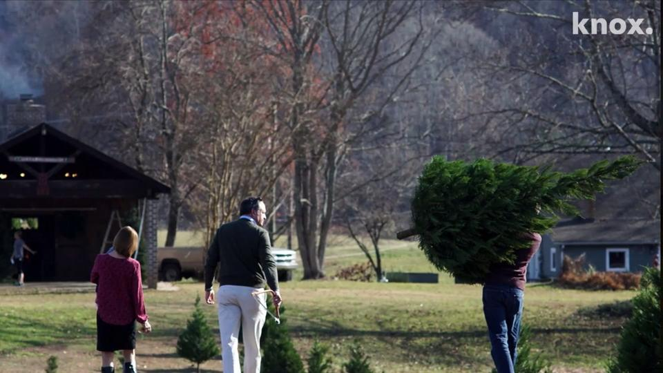 East Tennessee Christmas tree shortage drives up cost, worries farmers