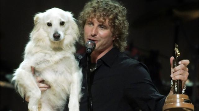 With 2018 being the Year of the Dog on the Chinese calendar, country and local music stars, past and present, show their love for dogs