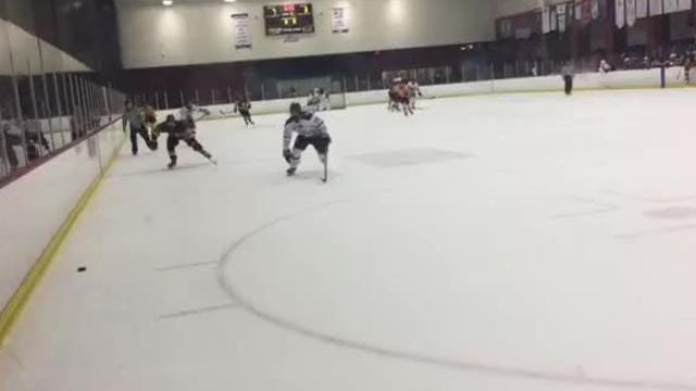 See the highlights from Wednesday's high school hockey all-star game.