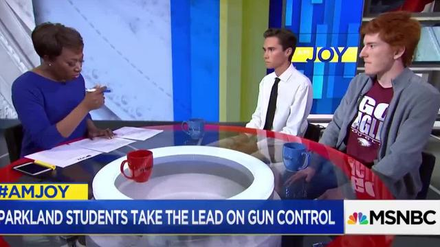 A senior at Marjory Stoneman Douglas High School and leader of the Never Again group, David Hogg, criticized FedEx on MSNBC in February 2018 for continuing to offer discounts to NRA members.