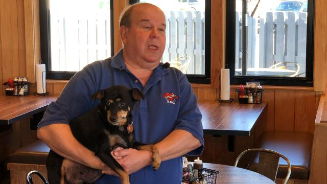 Owner of One & Only BBQ discusses his rescue dog.