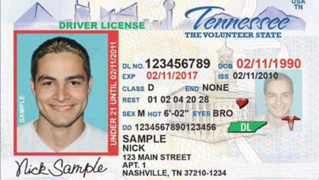 lost drivers license out of state tennessee