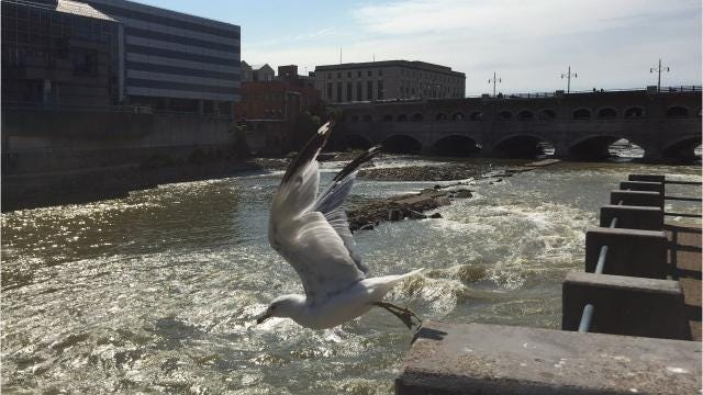 Low Genesee River provides glimpse of the past