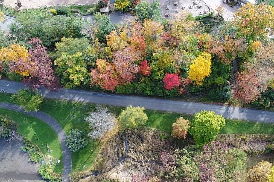 We took our drone out to look at fall colors in Seneca Park.