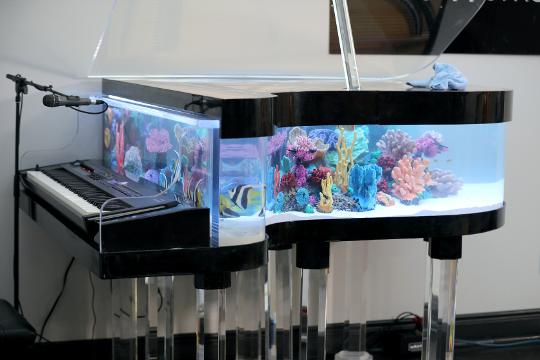 animal planet s tanked to feature aquarium at piano works mall