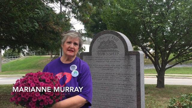 WATCH: Cherry Hill monument