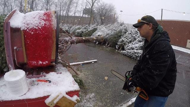 Video: Christmas tree shopping in the snow