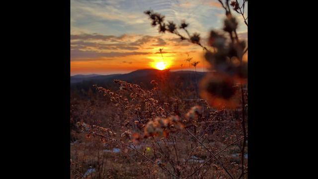 Each week we will present a selection of Instagram images captured by our photographers, as they travel throughout the Hudson Valley.