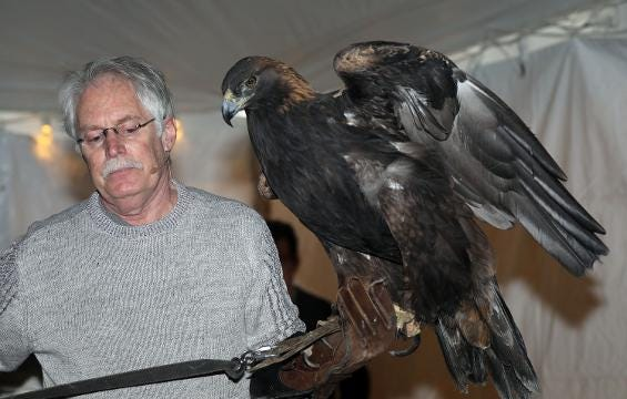 Video: Teatown's EagleFest at Croton Point Park