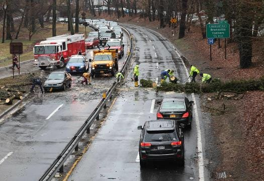 Video: Tree across four lanes of the BRP