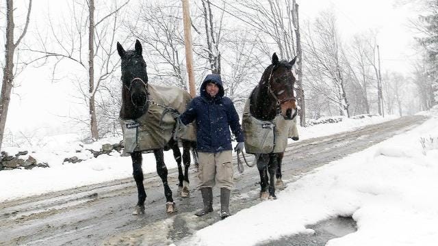 Perfecto Lopez walks with a couple of horses in the morning snow on Baxter Road in North Salem March 13, 2018. Frank Becerra Jr./Lohud