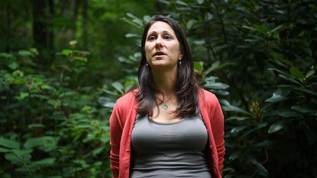 Michelle Pugliese, Southern Appalachian Highland Conservancy's land protection director, talks about the recent conservation easement in Weaverville.