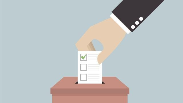 Early voting has begun in the Oct. 10 Asheville City Council primary election. Meet the mayoral and city council candidates.