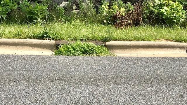 A reader asks if the DOT cleans out storm drains on Charlotte Highway, in part because of a recent hydroplaning incident.