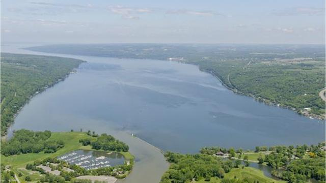 The New York State Department of Environmental Conservation is monitoring suspicious algae blooms in Cayuga Lake that may produce harmful toxins.
