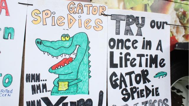 VIDEO: How a gator spiedie got on the Spiedie Fest menu