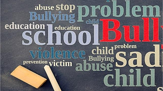 Political pundit Stephen Coleman will turn his attention to school bullying at an upcoming forum.