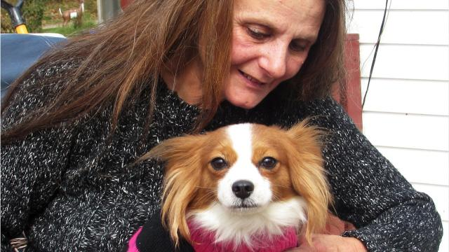 Linda Reichel cares for unwanted or abused pets and farm animals at her ranch near Wellsburg.
