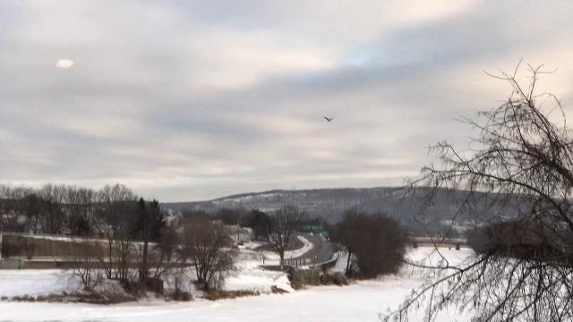 Two bald eagles took flight recently over the Rock Bottom Dam on the Susquehanna River in Binghamton. Video by Dave Foland of Vestal.