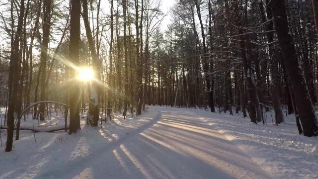 Chenango Valley State Park in Broome County, New York, attracts visitors year-round with its two lakes, abundant wildlife and trails for winter hiking or cross-country skiing.