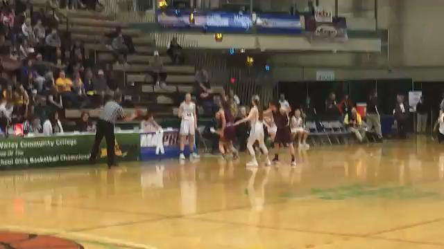 Delhi prevented Section 6's Franklinville from hitting the tying shot three times in the final seconds before Olivia Wakin grabbed the rebound and dribbled out the final seconds of the Bulldogs' 54-51 overtime victory in the Class D state final.