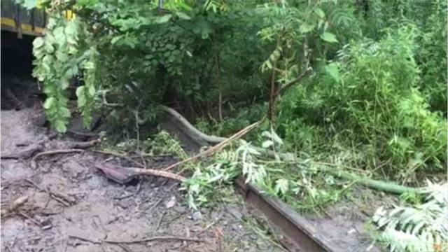 A train bound for Binghamton derailed on August 9 in the Town of Depositafter heavy rain washed out a bridge, sending cars into a river tributary. Video is courtesy of Dave Hamburg of the NYS DOT.