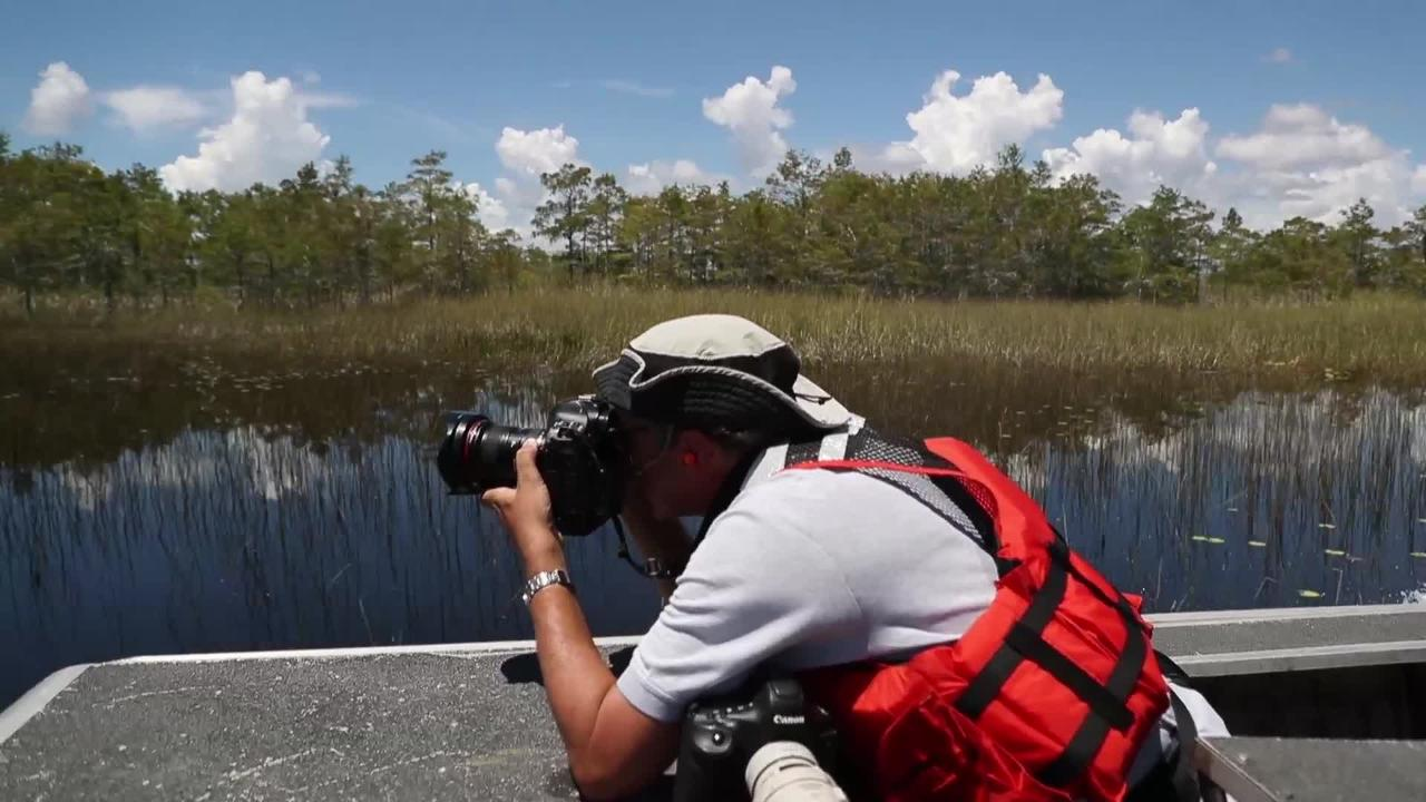 South Florida Water Management District emergency pumping from Francis S. Taylor Wildlife Management Area into Big Cypress Preserve.