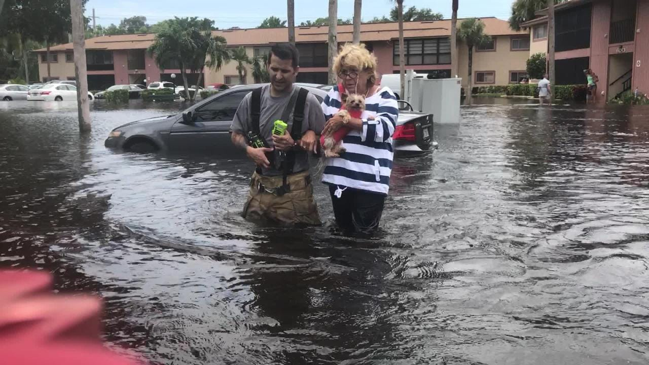 'He's my hero': Woman and dog rescued from flood in Island Park