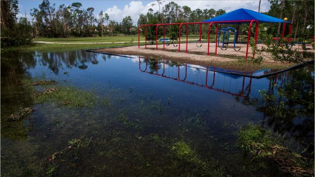 After Irma: schools review damage before cleanup efforts can start
