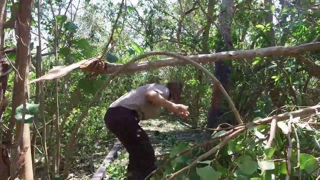"Hurricane Irma: J.N. ""Ding"" Darling National Wildlife Refuge an easy cleanup"