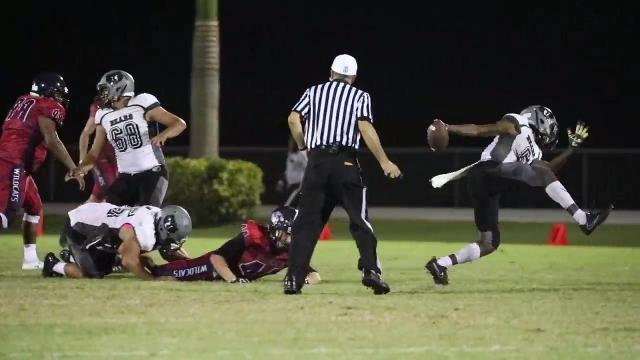 Highlights from Palmetto Ridge at Estero