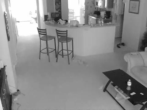 Burglary suspect in Lehigh Acres caught on camera