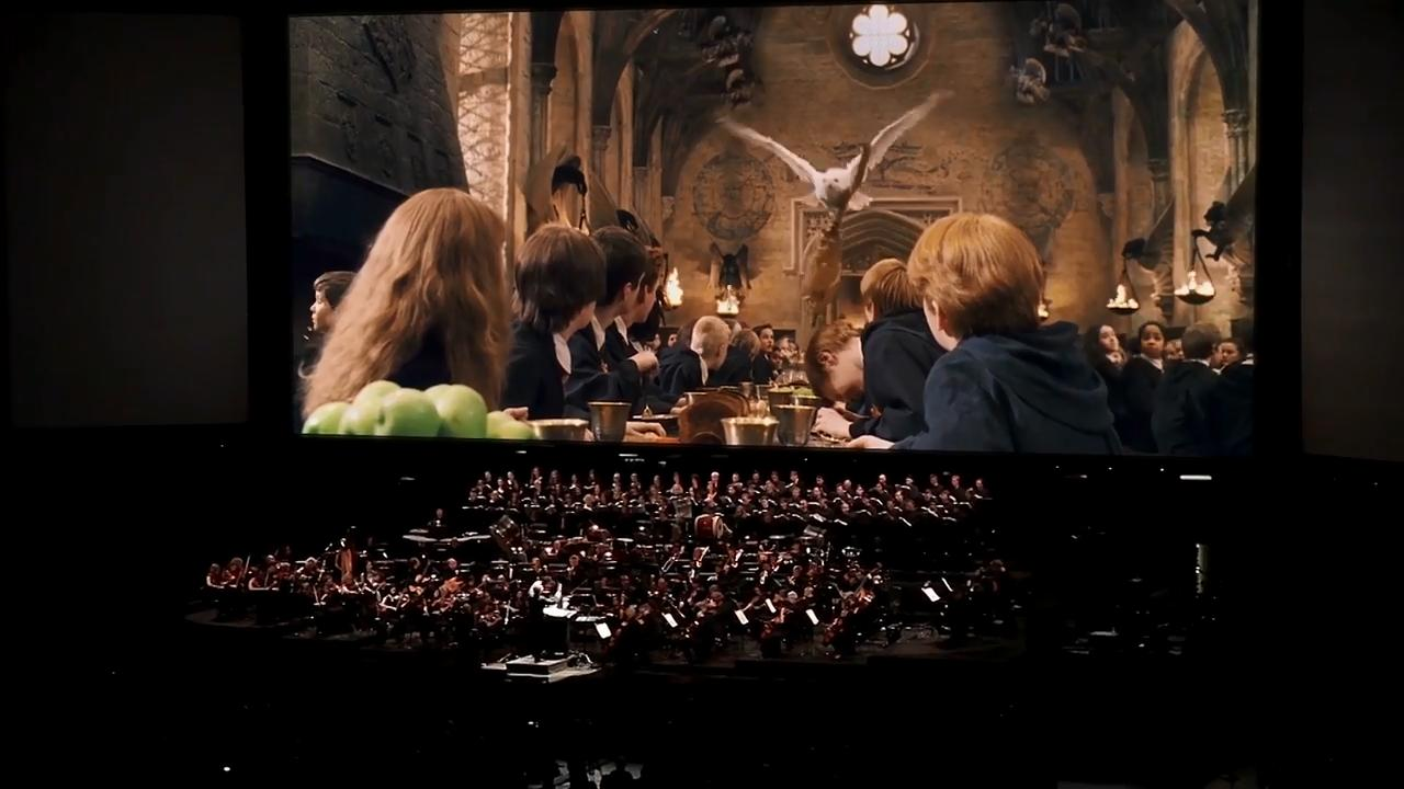 """The Southwest Florida Symphony performs the soundtrack to """"Harry Potter and the Sorcerer's Stone"""" this Saturday at Mann Hall. The movie will be shown on a giant screen. Watch the promotional video for the event."""