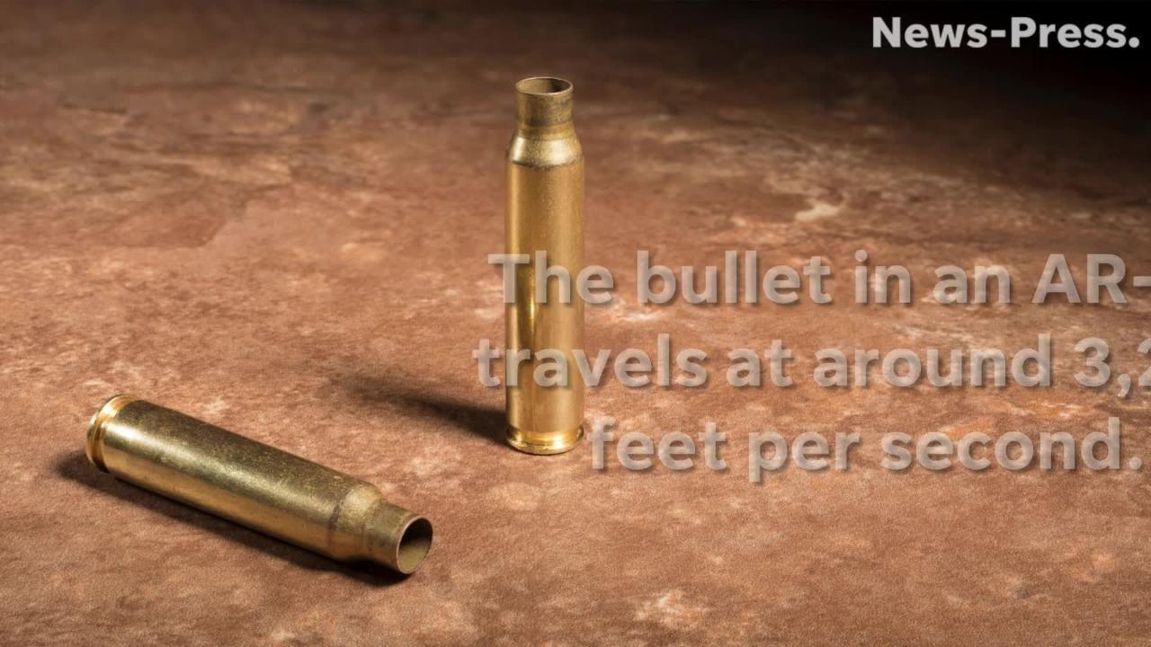 florida gun legislation prompts spike in sales