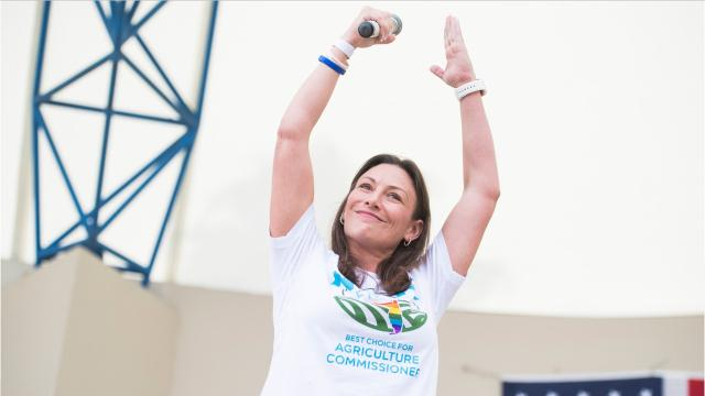 The new Florida commissioner of agriculture and consumer services is now the highest-ranking Democrat in the state. But who is Nikki Fried?