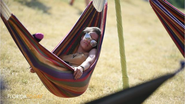 National Hammock Day: July 22