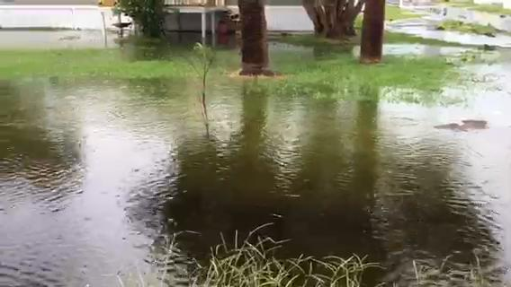 Hurricane Irma damage in Florida: City by city on home macon ga, home jacksonville fl, home orlando fl, home bonita springs fl,