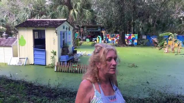 A Titusville artist is struggling with flooded property where she holds outdoor art classes. Video by Tim Shortt. Posted 10/17/17.