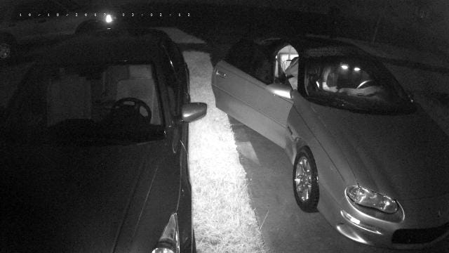 Palm Bay PD request help identifying car burglar who broke into several cars Wednesday.