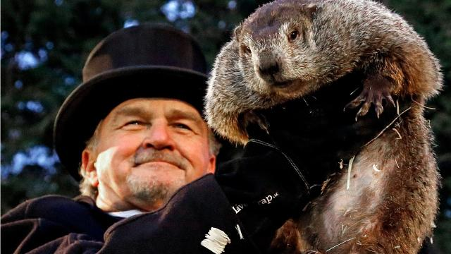 Will Punxsutawney Phil forecast six more weeks of winter in 2018? In 2017 he saw his shadow and forecasted six more weeks of winter.