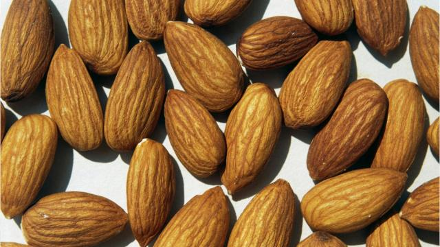 Satisfy your hunger on Feb. 16th, it's National Almond Day.
