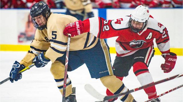 Essex hosted Champlain Valley Union in boys playoff hockey on Saturday, March 3, 2018.